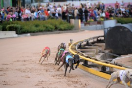 Thirty Talks aims for more Group One glory