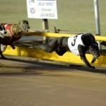 The winner of Race 4, Radinka Bale, is flying...literally