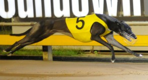 The Meadows Saturday: Can Double make it a Treble?