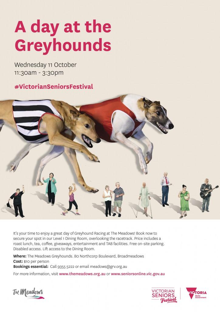 Seniors Festival A4 Poster
