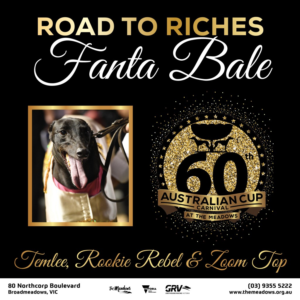 Road to Riches FANTA BALE
