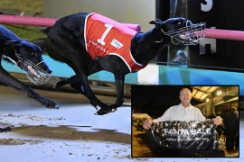 Record-breaking Fanta has 'a heart like I've never seen'