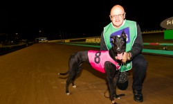 Cleo to start fave in Hume Cup decider