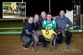 Blooming stayer defying trainer's doubts