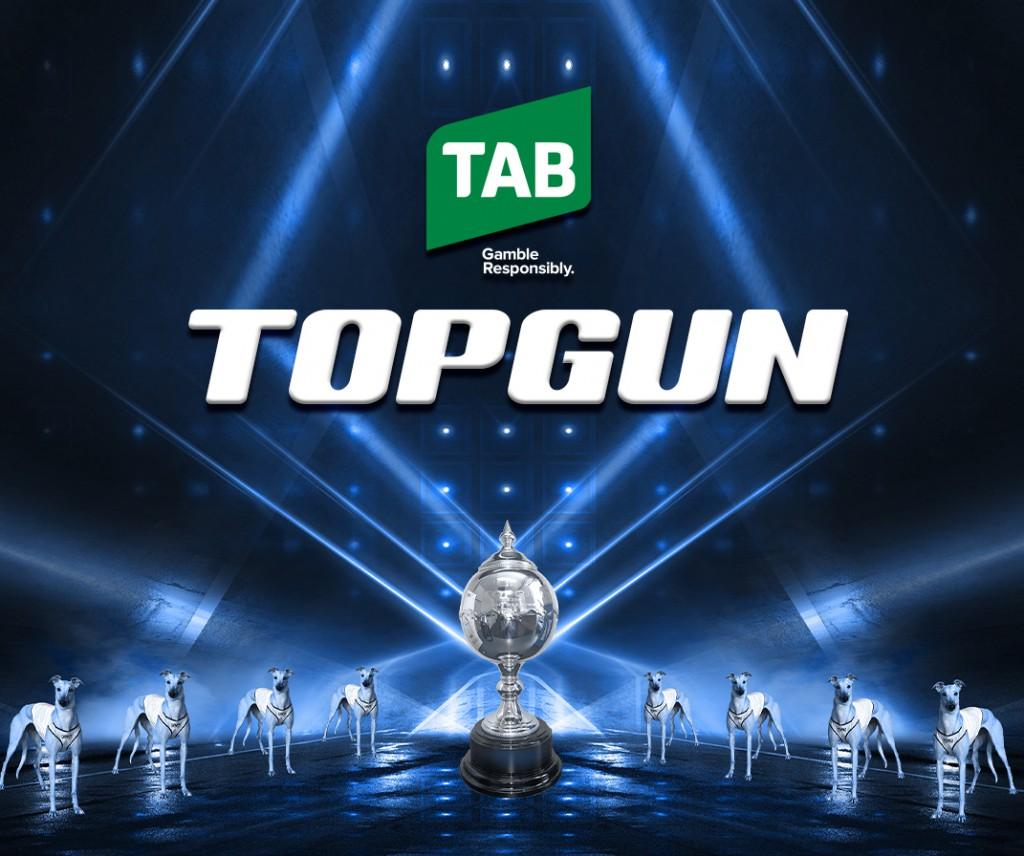 Topgun Graphic