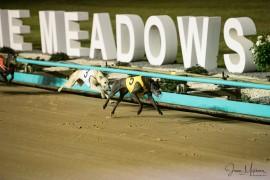 Delbridges set for big night at The Meadows