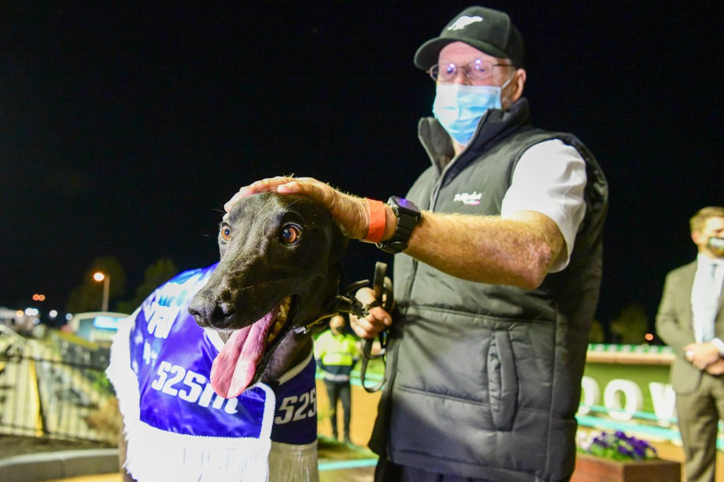 Shima Shine will be shooting for a second Group 1 at The Meadows after winning the 2020 TAB Topgun