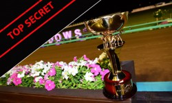 Australian Cup trainers have their say