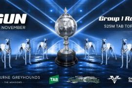 2021 GROUP 1 TAB TOPGUN FIELDS ANNOUNCED
